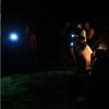 夜賞角鴞、夜間生態導覽