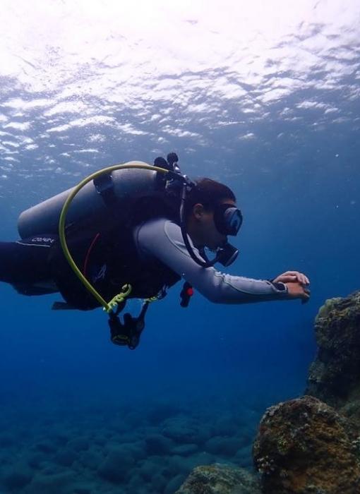 驚艷蘭嶼體驗潛水